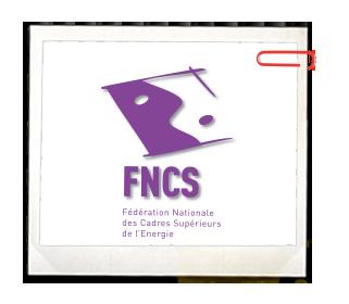 FNCS Fédération des Cadres Dirigeant de l'Energie
